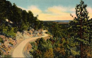 New Mexico Scenic Mountain Drive Curteich