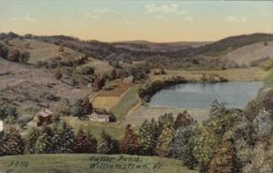 Vermont Williamstown Cutter Pond