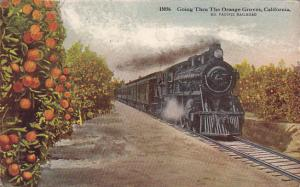The Overland Limited Train Going Through Orange Groves In California