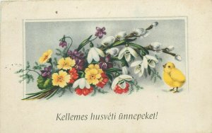 Hungary 1940s Easter greetings postcard snowdrops flowers fantasy & chicken