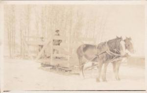 RP, Horses Pulling A Large Cart On A Sled, 1920-1940s