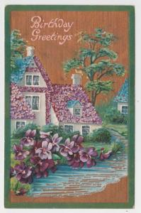 Pioneer OH Flower Houses Birthday Mary Drake Germany Vintage Postcard C02