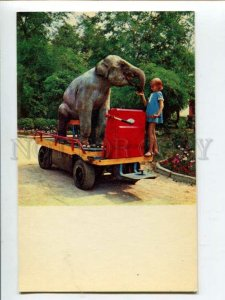 3117922 ELEPHANT & Girl on Car CIRCUS old Russian Photo PC