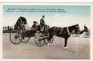 Canada Montreal Horse Drawn Carriage On Mount Royal sk4690