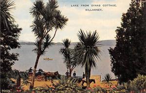 Killarney Ireland Lake from Dinas Cottage Killarney Lake from Dinas Cottage