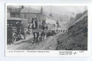 pp2228 - Devon - Horse pulling load on Dartmoor Tramroad, Laira- Pamlin postcard