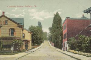 SUNBURY , Pennsylvania, 1914 ; Catawissa Avenue
