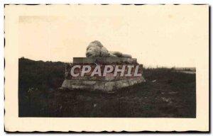 PHOTO CARD Douaumont The lion