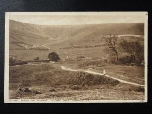 Isle of Wight: Pathway across the Common, Luccombe nr Shanklin c1928 by W.J.Nigh