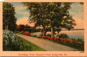 Pennsylvania Greetings From Fischer's Pool Kulpsville