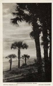 MYRTLE BEACH, South Carolina, 10-30s; Coastal Scene