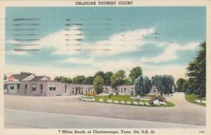 CHATTANOOGA , Tennessee , PU-1949 ; OkeDoak Tourist Court, U.S. 41