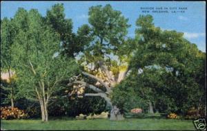 New Orleans L.A., City Park, Suicide Oak (1953)