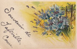 TAFTVILLE, Connecticut, 1900-1910s; Blue Flowers Decorated With Glitter
