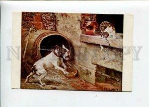 3156654 Hunt FRENCH BULLDOG & CAT w/ Fish by SAMSON vintage PC
