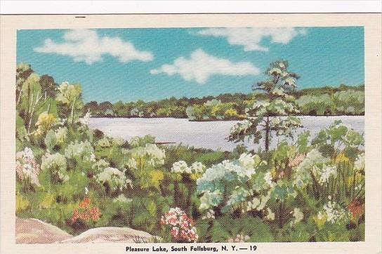 New York South Fallsburg Pleasure Lake Dexter Press