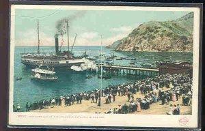 pc9891 postcard Santa Catalina Island Docks California UDB MOBSC