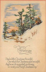 MERRY CHRISTMAS Christmas Spirit Trees, Snow Greetings c1910s Vintage Postcard