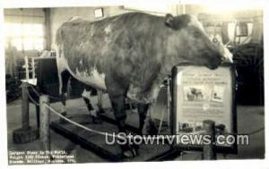 Real Photo - Wonderland Museum Billings MT Unused