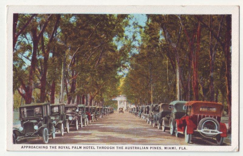 P1212 old postcard unused nice view old cars the australian pines miami florida