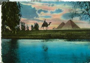 Egypt, Eventide near Pyramids of Giza, 1961 used Postcard