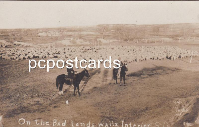 Real Photo Postcard On the Bad Lands - Wall Interier South Dakota - Sheep herder