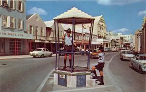 HAMILTON BERMUDA POLICEMAN DIRECTS TRAFFIC FROM BIRD CAGE POSTCARD