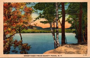 New York Greetings From Sandy Point 1947