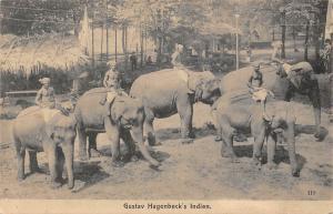 India Gustav Hagenbeck expedition elephants riders