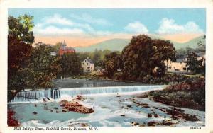 Mill Bridge Dam Fishkill, New York Postcard
