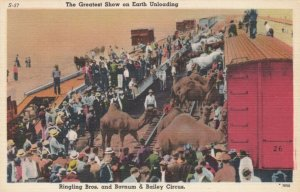 Ringling Bros. Barnum & Bailey Circus, 30-40s; Unloading animals from Trains