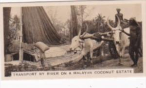 Carreras Vintage Cigarette Card Malayan Industries No 25 Transporting By Rive...
