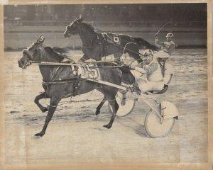 GREENWOOD Harness Horse Race , ANGELA HANOVER winner, 1978