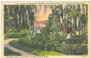 A Scene In Brookgreen Gardens, Myrtle Beach, South Carolina, PU-1949
