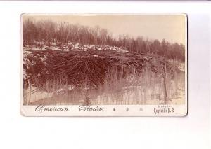 Huge Pile of Logs, Kentville, Nova Scotia, Vintage Thick Card Photograph