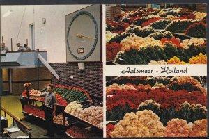Netherlands Postcard - Aalsmeer - Interior of The Flower Auction  BH5905