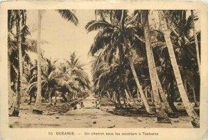 Oceania Teaharoa - un chemin sous les cocotiers