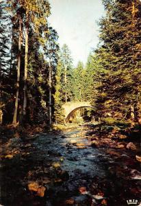 France Gerardmer Le Pont des Fees Bridge River Forest