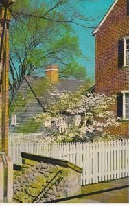 North Carolina Winston Salem Sidewalk Scene In Old Salem