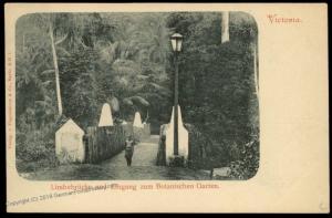 Germany Kamerun Victoria West-Afrika Postcard PPC Limbebruecke Cameroun 85098
