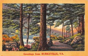 Burkeville Virginia Scenic Roadway Greeting Antique Postcard K82672