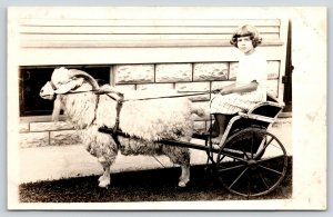 Real Photo Postcard~Barefoot Girl Holds Reins to Goat Cart~c1910 RPPC