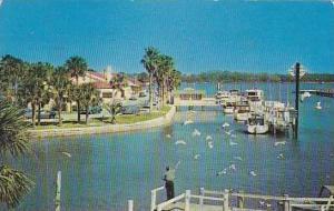 Florida Daytona Beach The City Island