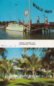 Florida Islamorada Whale Harbor Spa In The Florida Keys 1958