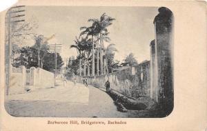 D41/ Bridgetown Barbados Foreign Postcard c1910 Barbarees Hill