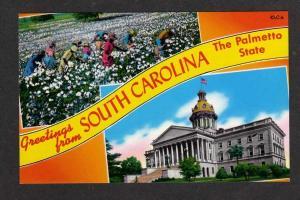 SC Greeting from SOUTH CAROLINA Postcard Palmetto State