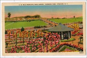 E.M. Mills Rose Garden, Thornden Park, Syracuse NY