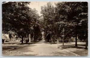 Lake Mills Wisconsin~Mulberry Street Homes~Drive to Right Sign~1930s RPPC
