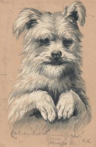 Dog Portrait , 1902