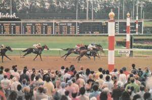 MIAMI , Florida , 1983 ; Horse Race Finish at Hialeah Race Track